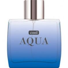 Туалетная вода Cool Aqua 100 мл DILIS