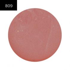 Помада в рефилах 2 гр. (Lip Color 2g.) MAKE-UP-SECRET 809 Прозрачный глянец (блеск)