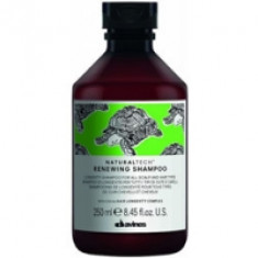Davines New Natural Tech Renewing Shampoo - Шампунь обновляющий, 250 мл