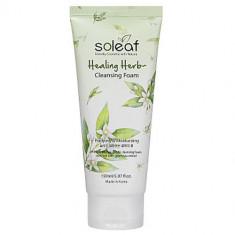 Soleaf Healing Herb Cleansing Foam Holika Holika