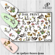 Dak Print, Слайдер-дизайн №1470