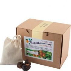 Моющее средство натуральное Мыльные орехи